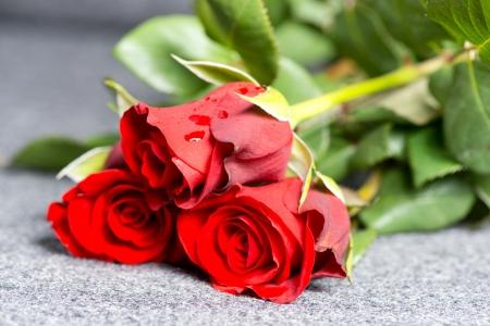 Drei rote Rosen auf einem Grab