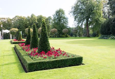 flowerbeds: Flowerbeds in garden