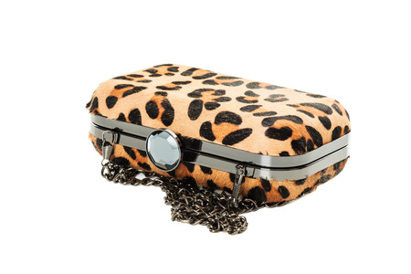satchel: Handbag Satchel Fashion in Leopard studio shot isolated on white background