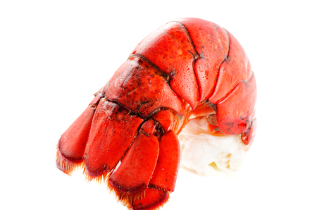 lobster tail: Boiled lobster tail isolated on white background