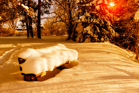 january sunrise: Winter in the park, bench under snow