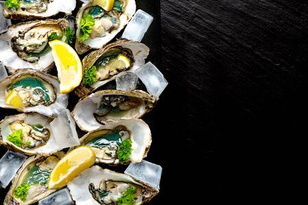 Raw opened oysters on plate with ice, lemon and parsley, copy space Stockfoto