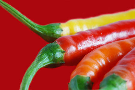 pungent: red chili pepper  Stock Photo