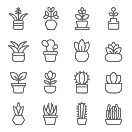 Plant icon set vector illustration. Contains such icon as Cactus, Leaf, Flower pot, Implant, Aloe, Botany and more. Expanded Stroke