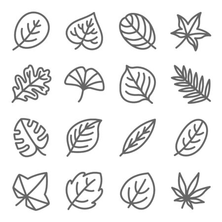Leaf icon set vector illustration. Contains such icon as Ginko, Leaf, Autumn, leaves, Aloe, Botany and more. Expanded Stroke