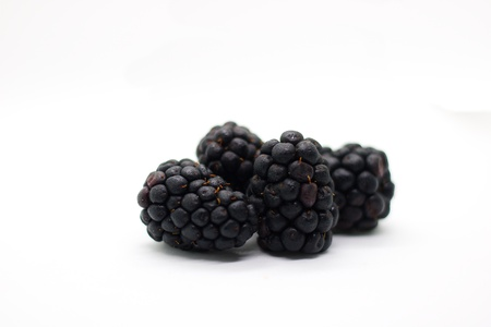 Four blackberries on white background, isolated. Freshly picked forest fruit with droplets of dew on it.
