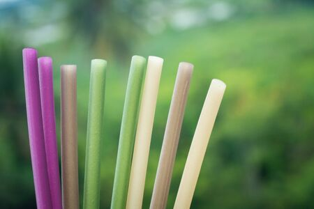 Eco Straw made from the rice, The recycle straw.