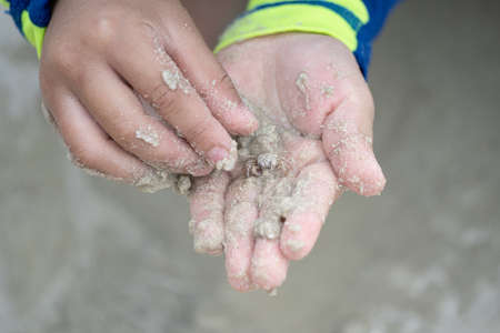 ghost crab in the kid hands on the sand at the Samet island beach.