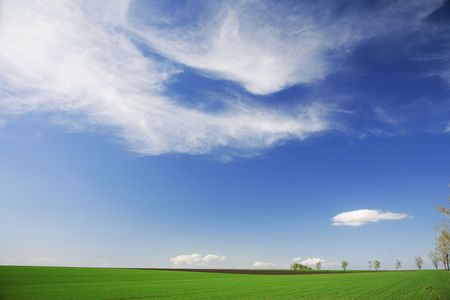 Green field, white clouds, blue skies in spring, general outdoors, rural scene photo