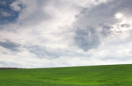 Green wheat field under cloudy skies photo