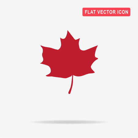 Maple leaf icon. Vector concept illustration for design.