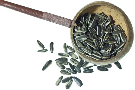 sunflower seeds  and ladle water on white background photo