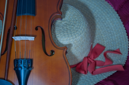 violin and fiddle photo