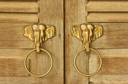Elephant head knocker on  wooden door photo