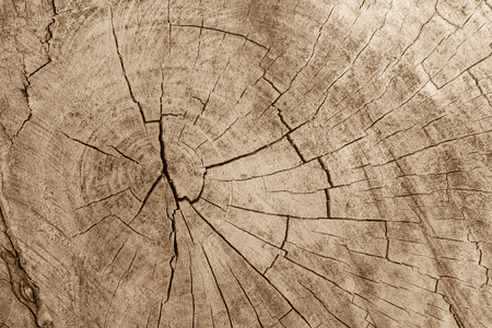 Oberfläche von Holz Hintergrund