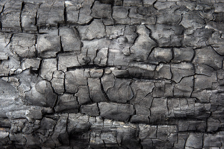 burnt wood: Surface of charcoal texture background. Burnt wood texture.