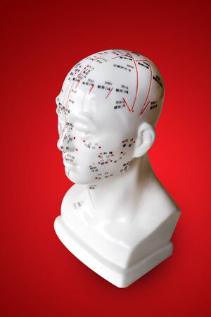 acupuncture points on health figure model - traditional Chinese health care