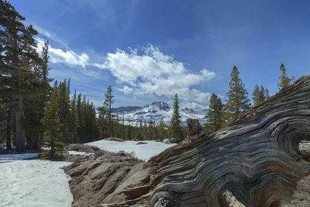 pct: Carson Pass Winter - Afternoon clouds over Sierra Nevada on the pacific crest trail.