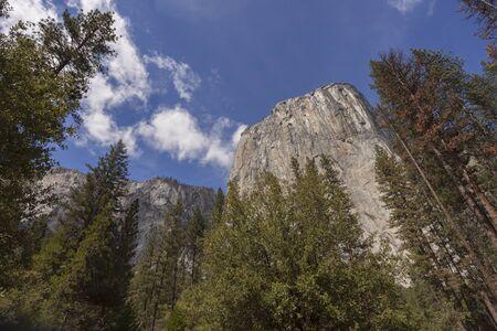 national geographic: El Capitan - Looking high into the face of El Capitan in Yosemite.