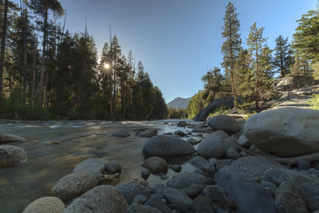 Sierra Evening Light - The sun sets through the trees along a river on the Pacific Crest Trail in the Sierra Nevada.