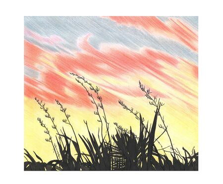 Hand drawing illustration with sky sunset and black plants 스톡 콘텐츠
