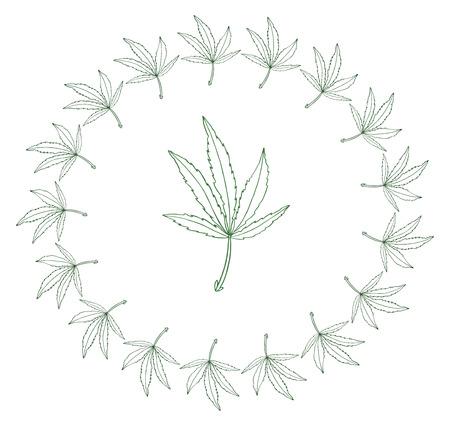 Decorative illustration green leave of big hemp in round frame