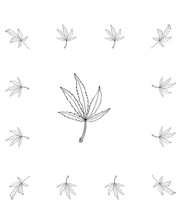 Vector branch of hemp with leaves in square frame