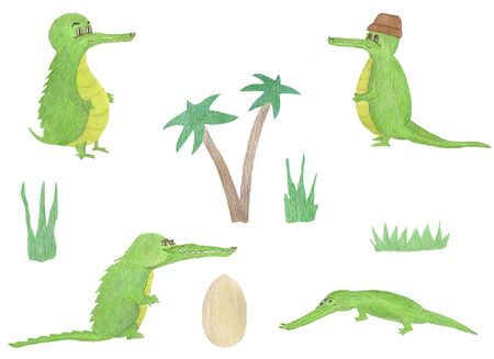 Cartoon green crocodile collection set with palm, grass and egg