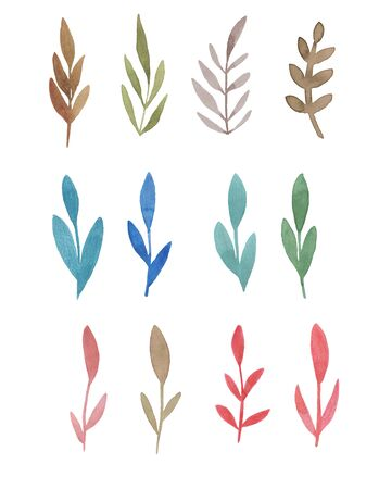 watercolor Clipart floral elements branch with leaves. Decorative elements for your design.. Leaves, swirls, floral.