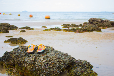 Shoes on stone at the beach, sea background