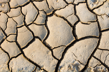 Drought, global warming, environment changes suddenly.