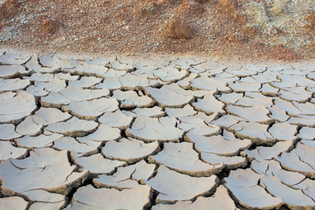The drought, global warming, environment changes suddenly.