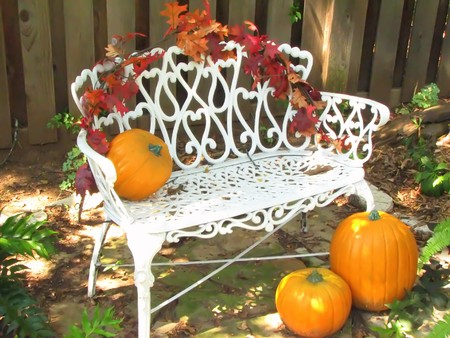 Harvest, Pumpkins on White Rod Iron Bench photo