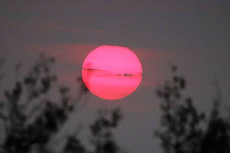 ブッシュベルドの夕日