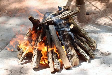 Wood fire burning for braai