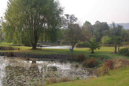 Peaceful scenery of pond in the countryside