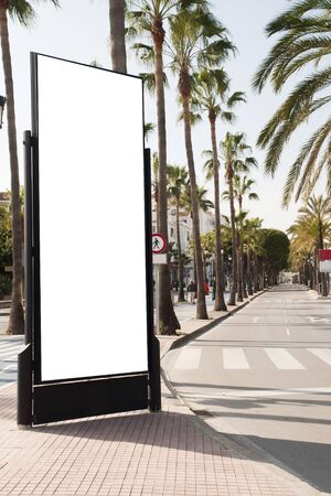 Billboard, banner, empty, white in the city center with palm trees, green plants
