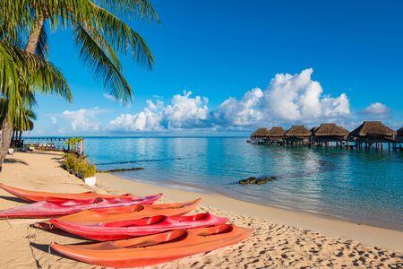 Tropical paradise with empty kayaks on the beach of Moorea Island.