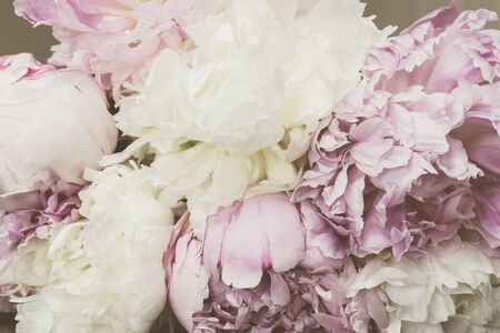 Filtered image with pastel colored peony flowers in retro style.