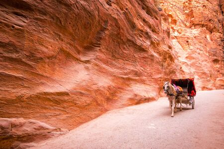 Horse and chariot ride in Siq, Petra, Jordan