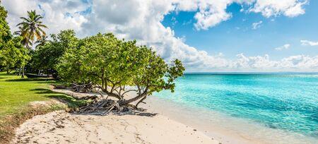 Panoramic beach landscape of Cayo Levantado, Samana Bay, Dominican Republic. Фото со стока - 149919773