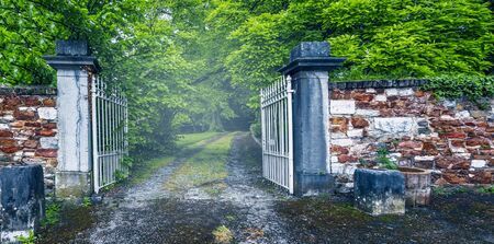 Open iron gate to the forest. Фото со стока