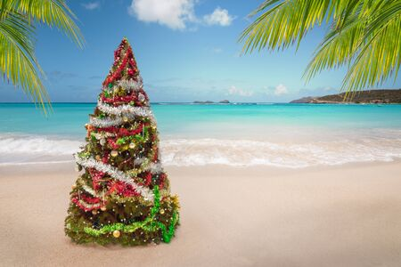 Christmas tree on the beach. Tropical summer holidays.