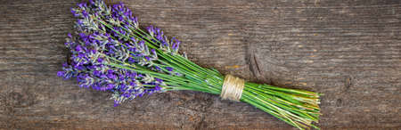 Lavender bundle on wood background. Фото со стока