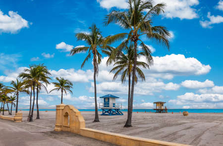 Beach with tropical coconut palm trees and boardwalk in Florida.