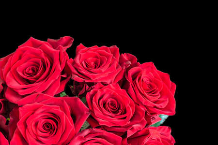 Red roses isolated on black background. Romantic bouquet of flowers.