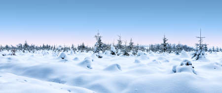 Panoramic winter snow landscape with snow covered trees.