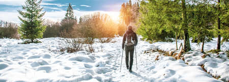 Popular winter outdoor activities. Male hiker hiking with backpack and Nordic walking poles in the snow.