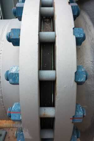 flanges: Typical polymer coated bolts and nuts connecting flanges
