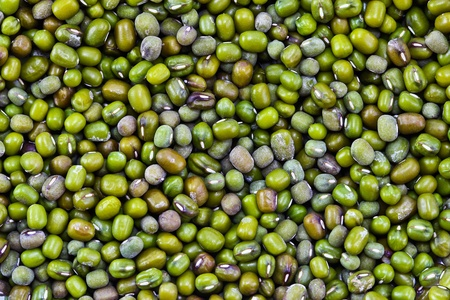 Closes � up green bean  Stock Photo